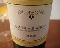 Palazzone2005e