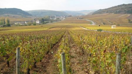Bourgogneocbm1_2