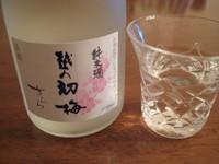 Koshinohatuumesarara