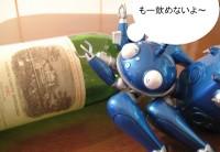 Bluetachikomanlafite_080307