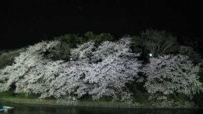 Chidorigafutipanorama1_2