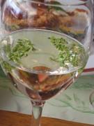Wineflowerglass080607_9