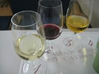 Wine080926