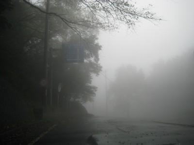 Fog081006