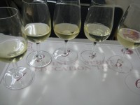 Wineschool090827