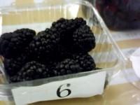 Berry091106_2