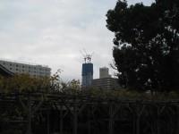 Skytree091213