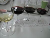 Wineschoolglass091204
