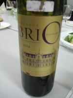 Brio2004_20100305