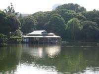 Azumaya20101001