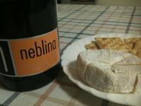 Neblinabrut20101219