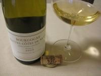 Bourgognehautescotesdenuits_drc2007