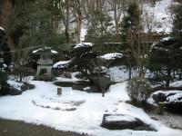 Garden_20110123
