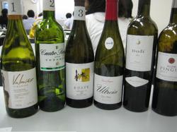 Spainmay2011