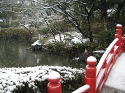 Kyuyasudateien05_20120229