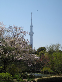 Skytreemain_20120409