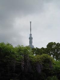 Skytreefuji_20120501