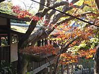 Watarirouka2_141123