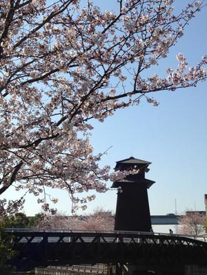 Hinomiyagura_150331