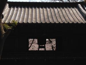 Hokederakairou_150331_3