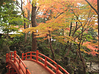 Koisigawa_hasi_151210
