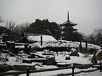 Gojyuunotou_160118