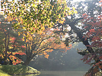 Koisihigawa5_161120