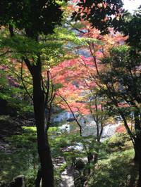 Koisihigawa9_161120
