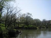 Shinjiike_yasudateien